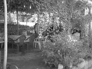 פינת נופש בכורדיסטן (צילום: צבי בראל)