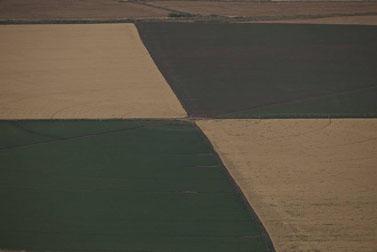 שדות בעמק בית-שאן (צילום: דורון הורוביץ)