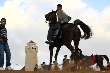 רכיבה על סוסים בחגיגות עיד אל-אדחה, ליד אוגוסטה ויקטוריה בירושלים. דצמבר 2008 (צילום: נתי שוחט)