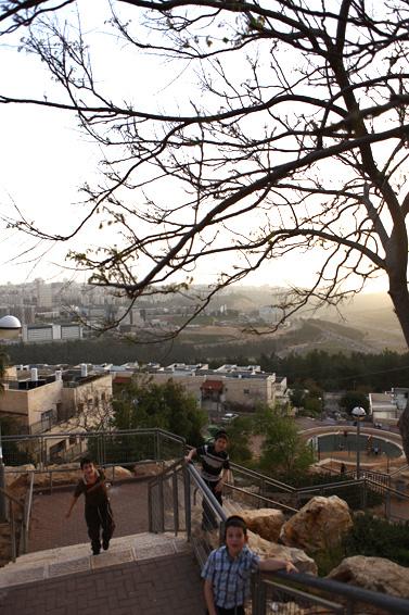 שכונת רמת-שלמה בירושלים, מרץ 2010 (צילום: קובי גדעון)