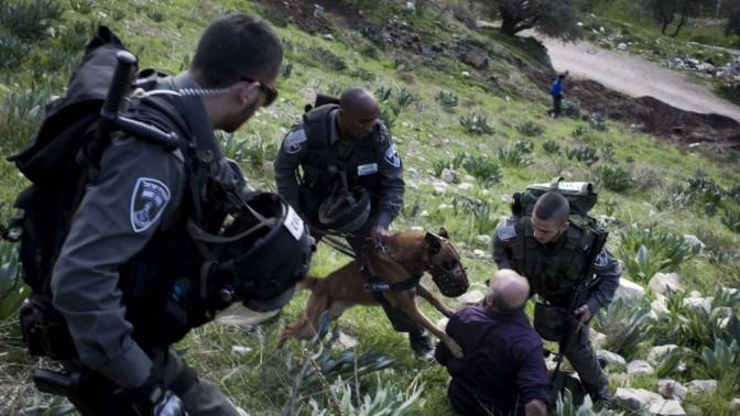 """חיילי מג""""ב מונעים מפלסטיני להגיע לביתו בשעת הריסתו, אתמול בסילואן (צילום: טלי מאייר)"""
