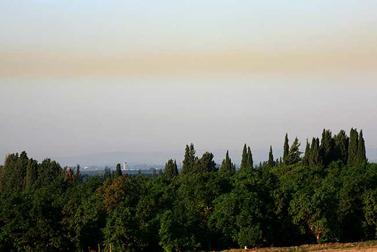 נופים חקלאיים ליד חדרה, ופס זיהום מתחנת הכח (צילום: חן ליאופולד)