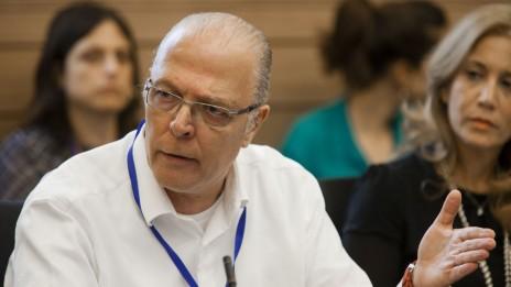 """איקה אברבנאל, סמנכ""""ל קשרי לקוחות בחברת טבע. ועדת הכספים של הכנסת, 16.10.13 (צילום: פלאש 90)"""