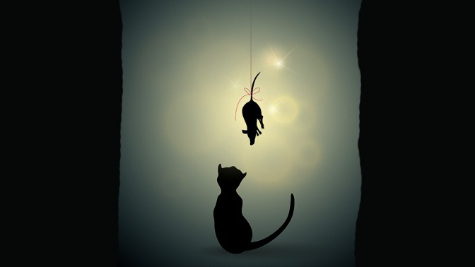 (איור חתול ועכבר: שאטרסטוק)