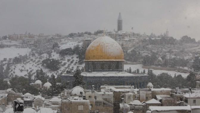 הר הבית בירושלים, 13.12.13 (צילום: יונתן זינדל)