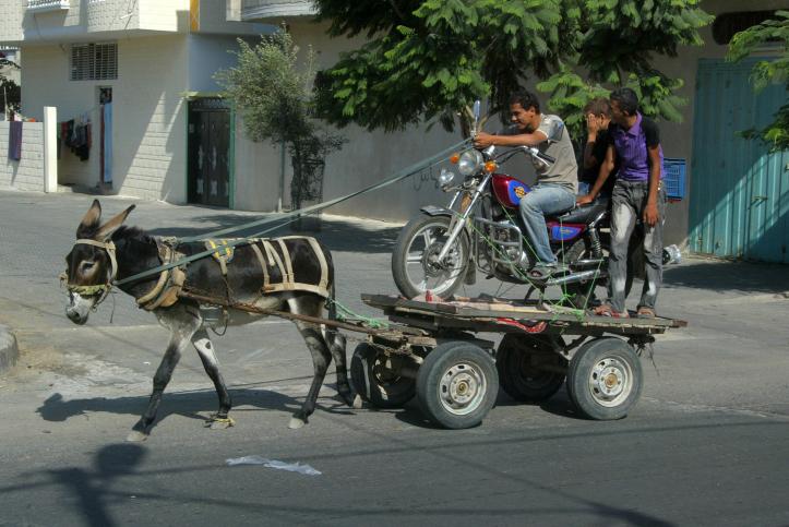 פלסטינים מסיעים אופנוע בחוצות רפיח, רצועת עזה, 18.9.10 (צילום: עבד רחים כתיב)