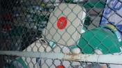 """קלטות זרוקות בחצר מתחם הערוץ הראשון ברוממה, ירושלים. 27.10.2010 (צילום: """"העין השביעית"""")"""