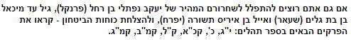 קטע מתוך כתבה שפורסמה באתר ynet (צילום מסך)