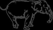 הפיל שבחדר (איור: ניקיטיב קונסטנטין, שאטרסטוק)