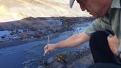 """דליפת נפט מצינור של חברת קצא""""א בדרום הארץ, 18 ק""""מ מצפון לאילת, 8.12.14 (צילום: המשרד להגנת הסביבה)"""