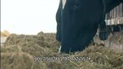 """מתוך """"תחקיר החלב"""" של התוכנית """"אורלי וגיא חוזרים עם תשובה"""" (צילום מסך)"""