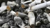 בדלי סיגריות במאפרה (צילום: נתי שוחט)