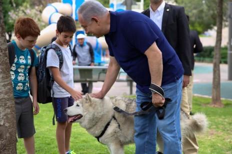 תמונה 3: נתניהו בגובה העיניים עם ילדים מלטפים את הכלבה קאיה, 13.5.16 (צילום: צלם לא ידוע, פורסם בעמוד הפייסבוק של ראש הממשלה ללא קרדיט)