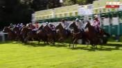 שידור ישיר בערוץ one של מירוץ סוסים באנגליה