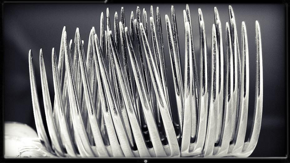 מזלגות (צילום: נחלת הכלל)
