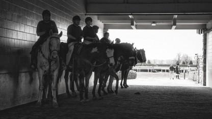 סוסי מירוץ ורוכבים (צילום: kblaw, רישיון CC0 Public Domain)